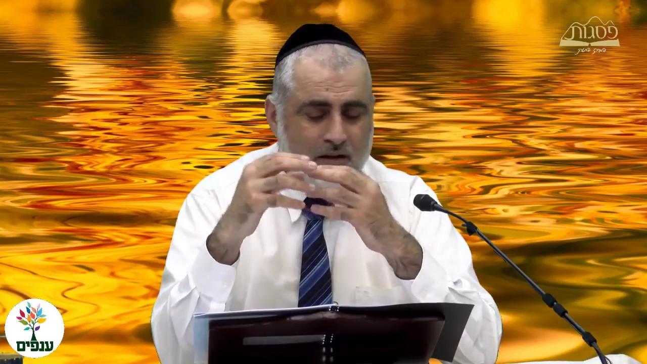 כשרות המטבח היהודי - הרב חיים דרשן HD