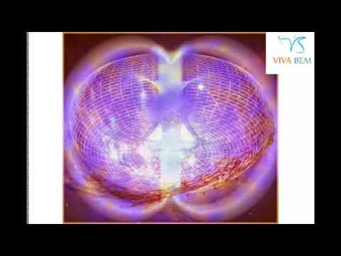 Transição Humana x Transição Planetária - Marcus Forte - Palestrante do Viva Bem