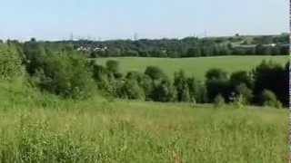 Альпийская деревня в п. Мистолово  июнь 2013 года(, 2013-06-22T05:56:45.000Z)