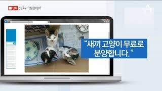 [채널A단독]미공개 SNS 살펴보니…주범 심리 고스란히