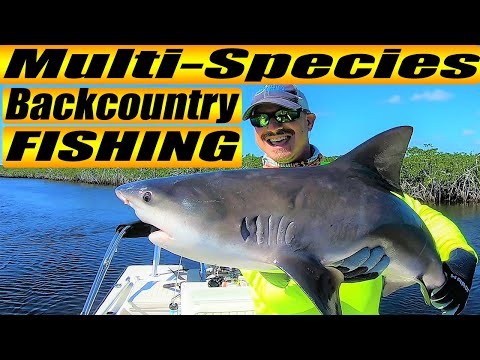 Multi-Species Flamingo Backcountry Fishing (How To Catch More Fish Inshore; 2019)