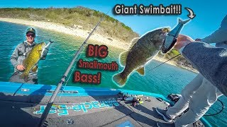 Fishing GIANT Swimbaits For SMALLMOUTH BASS??