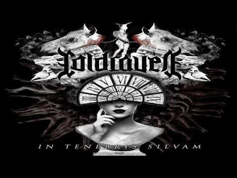 Cold Raven -  In Tenebris Silvam (Full-length : 2020)
