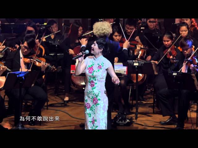 王小樹《心中喜歡就說愛》 【永遠的鄧麗君_情繫40慈善演唱會】