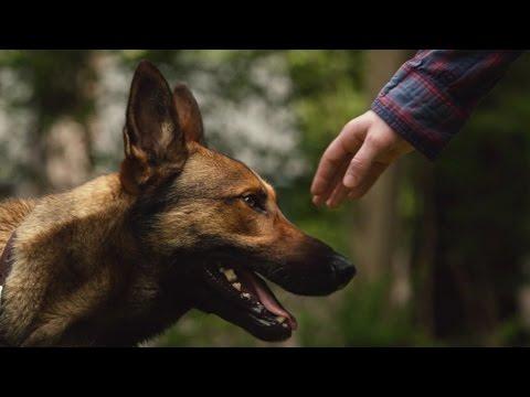 'Max' Trailer