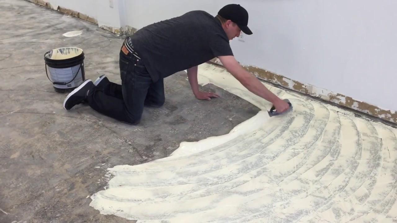 Glue Carpet Pad Down Carpet Vidalondon