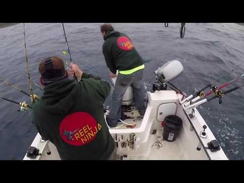 30 Pound Albacore Tuna - Raw Catch