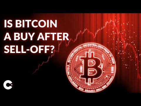 Bitcoin Price Prediction January 2021   20% Drop A Buying Opportunity?