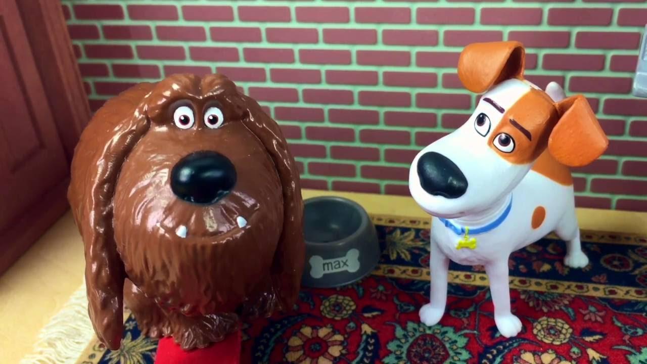 Novela A Vida Secreta dos Bichos Tem cachorro novo no Apê Max e Duke não Conseguem se Entender