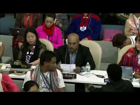 West Papua intervention at UNPFII 13th Session, 2014.