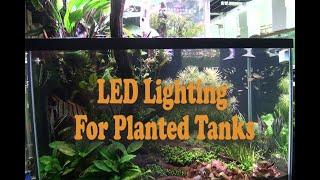 Full Spectrum LED lighting For Planted Tanks