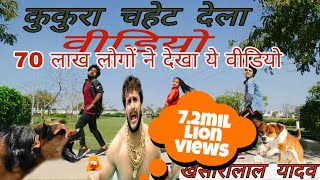कुकुरा चहेट देला Kukura Chahet Dela dance video | Khesari Lal Yadav & Priyanka Singh