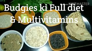 BUDGIES PARROTS, Lovebirds,Coacktail KI FULL DIET AND MULTIVITAMINS