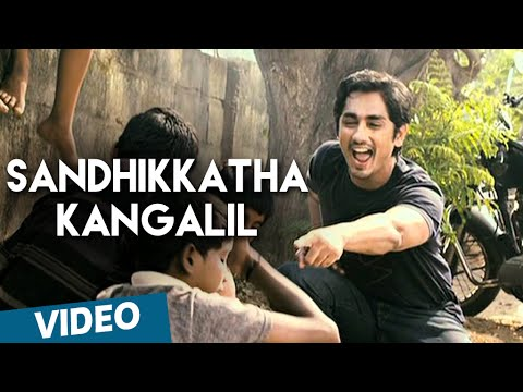 Sandhikkatha Kangalil Official Video Song | 180 | Siddharth | Priya Anand