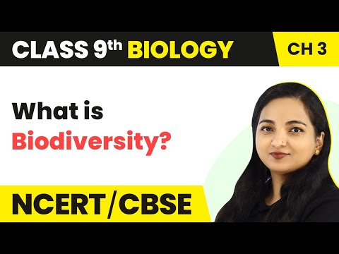 Biodiversity - Diversity in Living Organisms | Class 9 Biology