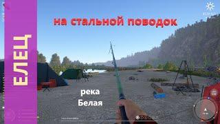 Русская рыбалка 4 река Белая Елец на стальной поводок