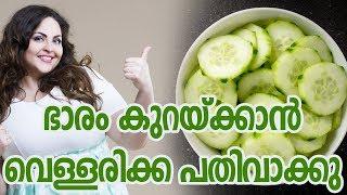 ഭാരം കുറയ്ക്കാൻ വെള്ളരിക്ക പതിവാക്കുHealthy kerala | Health tips | Health | Fat reduce | Weight loss