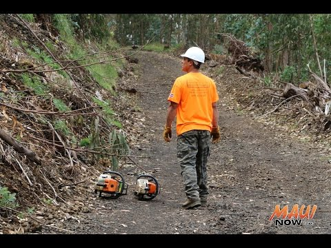 Kula Forest, Polipoli to Reopen After Hurricane Iselle - March 10, 2015