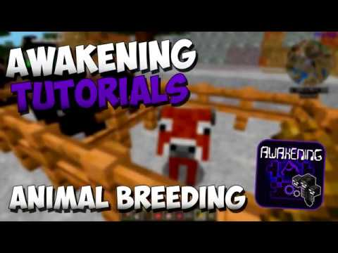 Awakening Modpack Tutorials - Animal Breeding Guide