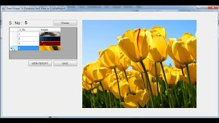 C# Copy images to Database After View  Picturebox and crystalreports  Part I
