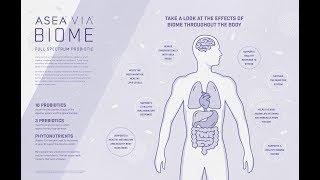 ASEA VIA Biome Full Spectrum Probiotic Supplement