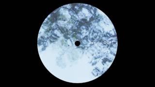 Svreca & Voices From The Lake - Isolation [SPAZIO008]