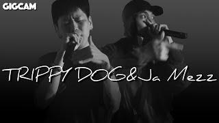 트리피독 (TRIPPY DOG), 자메즈 (Ja Mez…