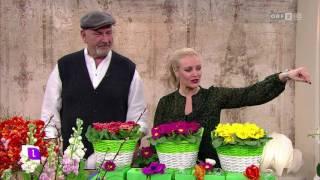 Wildwuchs Wien - Alles Frühling