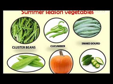 Summer Season Foods