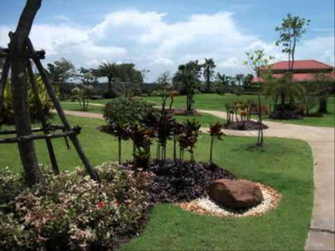 การจัดสวนถาดแห้ง รั้วบ้านสวน