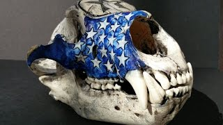 How to Carve a Bear Skull with a Dremel