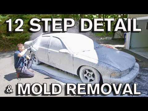 12 Step Detail: Mold Removal and Plasti-Dip Repair for Used Car Sale: Impala SS