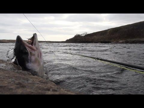 Рыбалка - Информационно развлекательный портал