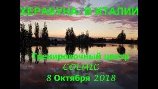 ХЕРАБУНА-В ИТАЛИИ  Часть 1-ая / 8-10-2018