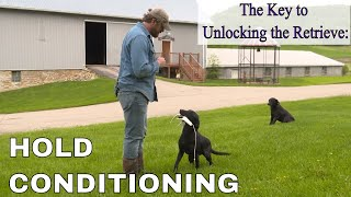 Hold Conditioning: Gun Dog Delivery Without Forced Fetch