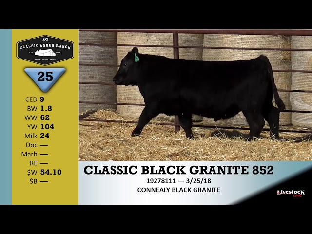Classic Angus Ranch Lot 25