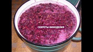 Как приготовить ВИНО В ДОМАШНИХ УСЛОВИЯХ из винограда. Часть 3 - тихое брожение вина