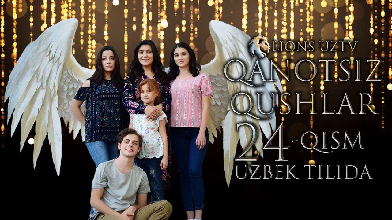 QANOTSIZ QUSHLAR 24 QISM TURK SERIALI UZBEK TILIDA | КАНОТСИЗ КУШЛАР 24 КИСМ УЗБЕК ТИЛИДА