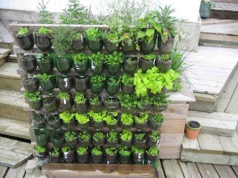 Vertical Garden Ideas Bangalore - A 0$ Vertical Garden with plastic soda bottles