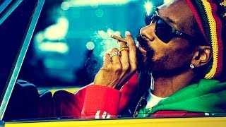 Snoop Dogg spits an epic freestyle live on The Dr Greenthumb Show | BREAL.TV
