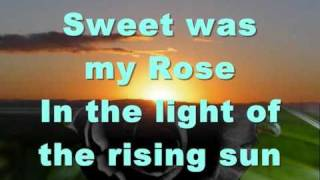 Sweet was my rose - New Velvet Glove