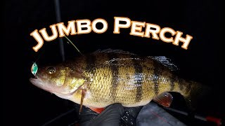 Lake Vermilion Perch | Ice Fishing