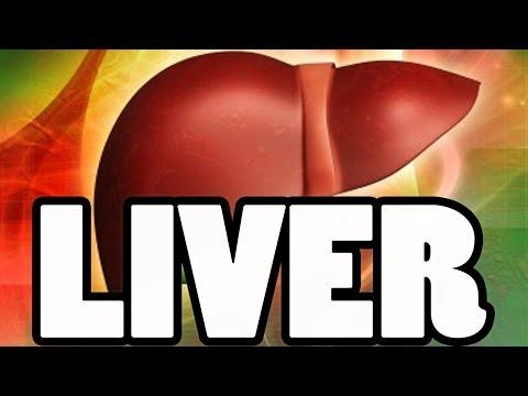 Important Liver Values Albumin, ALT, ALP & AST