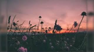 Faouzia & John Legend - Minefields (slowed+reverb)