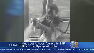 Suspect Under Arrest In B15 Bus Line Spray Attacks