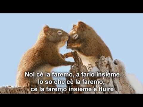 coldplay up & up traduzione italiano