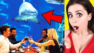 Amazing Restaurants You Wont Believe !