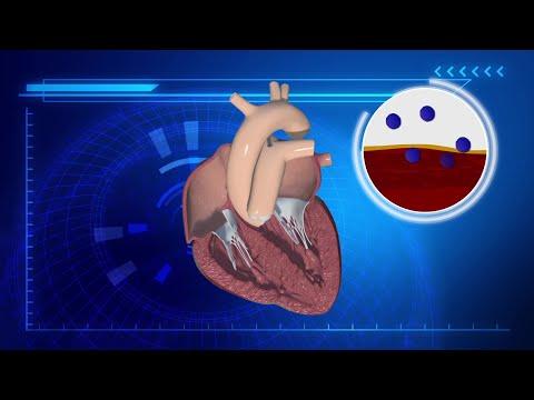 Tick saliva could cure myocarditis, a heart disease