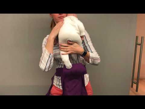 Izmi Baby Carrier Demonstration