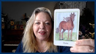 Your Daily Focus for April 24, 2019 through Tarot, Numerology and Astrology